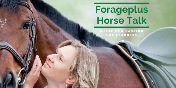 Forageplus Talk Horse Information