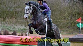 Caltastic Performance Horse!