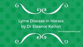 Lyme Disease in Horses by Dr Kellon