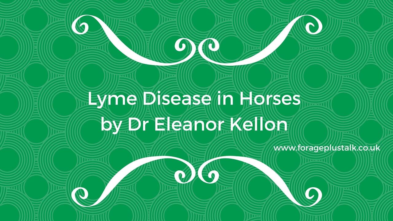 Lyme Disease in Horses by Dr Eleanor Kellon